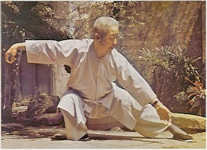 Zheng Manqing in snake creeps down.